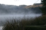 Evening mist rising from the lake